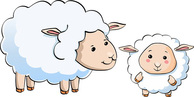 Ovečky, láska, mateřská láska